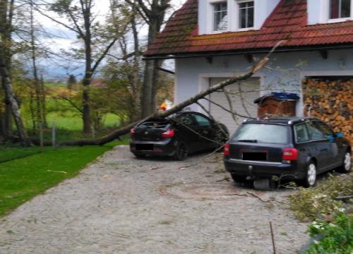 Sturmschaden - 29.10.2017